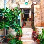 this is the entrance of our hostel.it is floral, aromatic and easy.