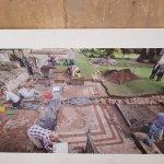 Museum excavation photo
