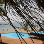 Photo of Dugong Beach Lodge