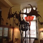 Sedgwick Museum of Geology