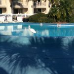 Best Western Plus Yacht Harbor Inn Photo