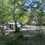 Photo of Camping de l'Ayguette