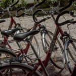Sportlich Graz erkunden: unser Fahrradverleih ist gratis!