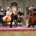 Davide Amadio baroque cellist