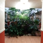 Photo of Palm Villas Port Douglas