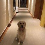 A mi Lolo le encantó el hotel