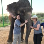 Elephant bath and feeding - one of the highlights of our trip that Janu arranged.