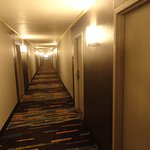 It is a long hallway. View is from 2 rooms past the elevator