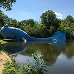 Photo of Blue Whale of Catoosa