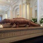 Lovely alligator decor