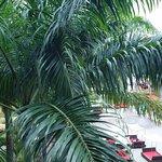 Royal Decameron Punta Centinela Foto