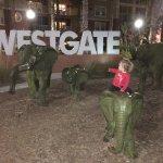 Foto di Westgate Lakes Resort & Spa