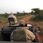 Photo de Mohlabetsi Safari Lodge