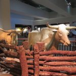 Longhorns are an important part of the Texas history.