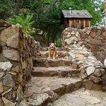 Shasta State Historic Park Foto