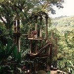 palacio de bambú
