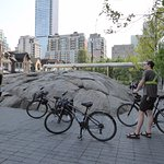 Toronto Bicycle Tours Foto