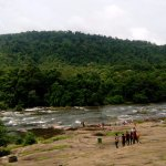 Photo de Athirappilly Waterfalls