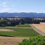 Willamette Valley Foto