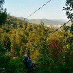 Rogue Valley Zip-Line Adventure, 20 miles North of Ashland