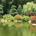 Foto de Anderson Japanese Gardens