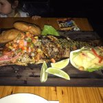 Giant Red Snapper !