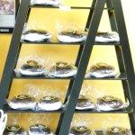 Rack of Jumbo Whoopie Pies