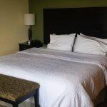 Photo de Hampton Inn & Suites Miami-South-Homestead