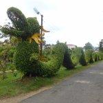 Photo de Dalat Flower Park