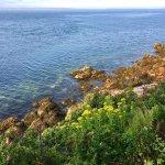 Photo de Bass Harbor Head Lighthouse