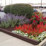 Foto de Red Roof Inn Chicago-Downers Grove