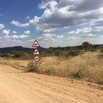 Photo de Okonjima Bush Camp
