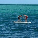 paddleboard wrestling