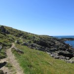 Along Anglesey Coastal path