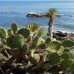 Beautiful Beaches and Rocks