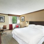 Four Points, Asheville Downtown-Standard King Guestroom