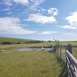 Photo of Seven Sisters Country Park