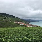 Photo of Vignobles de Chexbres