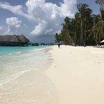 Gili Lankanfushi Maldives รูปภาพ