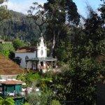 Quinta do Monte Foto