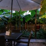 Foto de Astoria Garden