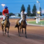 Photo of Hippodrome Cabourg