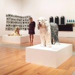 Jeff Koons, Bob Tail, 1991 e Poodle, 1991;  Allan McCollum, Collection of 60 Drawings, 1988 - 19