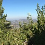 View from Mount Herzl stop.