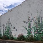 Downtown is filled with gorgeous murals. This one is on the side of the Prairie Rose Cafe!