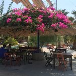 Photo of Dilaila Katsadia Restaurant Bar Cafe