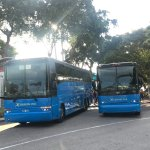 Buses at Bayside Marketplace
