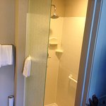 Notice that the shower doesn't have a door. NOT good!!!!!