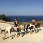 Gozo Stables Horse-Riding Photo