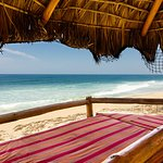 Beach front Palapa